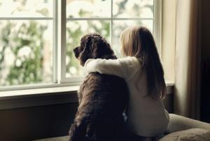 How to take care of your pets during the cold weather