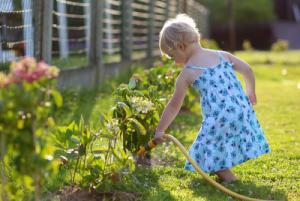 Flower power: Gardening can have a positive impact on your mental health
