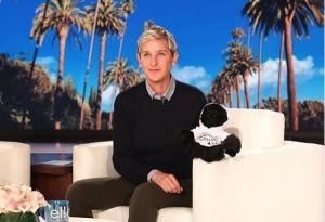 Ellen DeGeneres apologies to Jenna Dewan after name mishap on live TV
