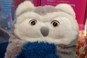 Crumlin hospital needs your help reuniting this toy owl and his owner