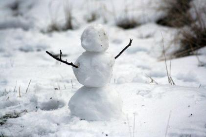 This is why the term Snowpeople has been dividing the Internet