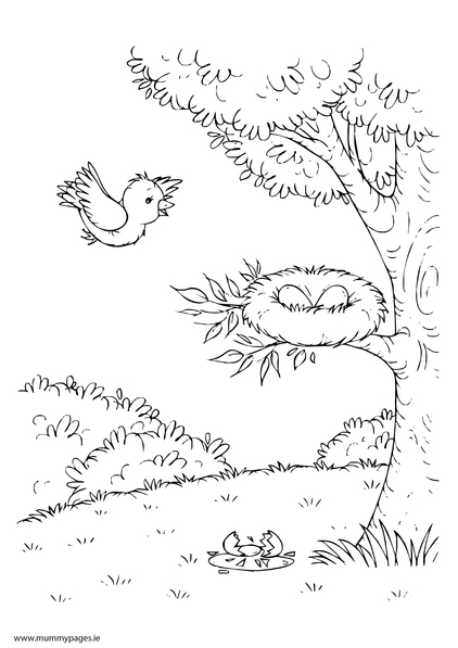 Spring Scene With Tree And Birds Nest Colouring Page