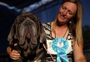 The Worlds ugliest dog is actually kind of cute, and were a bit confused